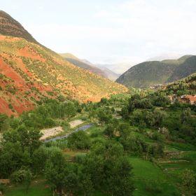 Verstilde Oase in Marokko 8