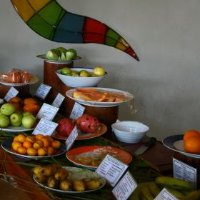 Ayurvedakuur in Sri Lanka 13