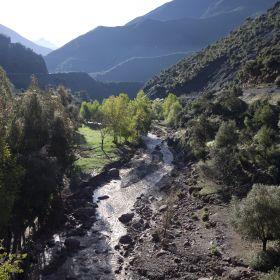 Verstilde Oase in Marokko 24