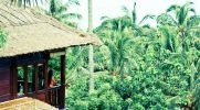 Boutique Detox, Yoga & Spa op Bali 11