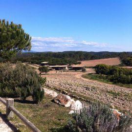 Yoga & Detox in de Algarve 17