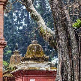 Yoga en Boeddhisme in Nepal 18