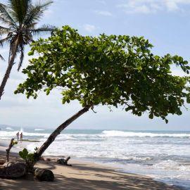 Yoga in Costa Rica 1