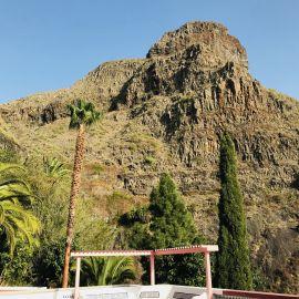 Yoga op Tenerife 21