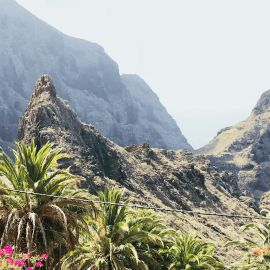 Yoga op Tenerife 19