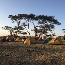 Mindfulness reizen door Tanzania 36