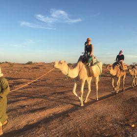 Verstilde Oase in Marokko 11