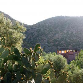 Verstilde Oase in Marokko 12