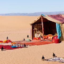 Verstilde Oase in Marokko 22