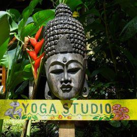 Yoga in Costa Rica 16